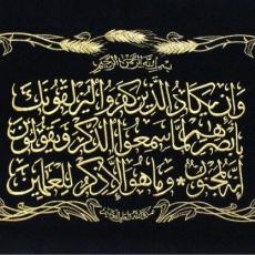 Wa In Yakād Verse | 68:51-2